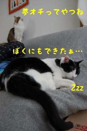 c0181639_0561072.jpg