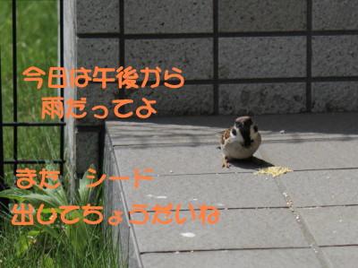 b0158061_20134586.jpg