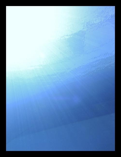 b0062363_17401415.jpg