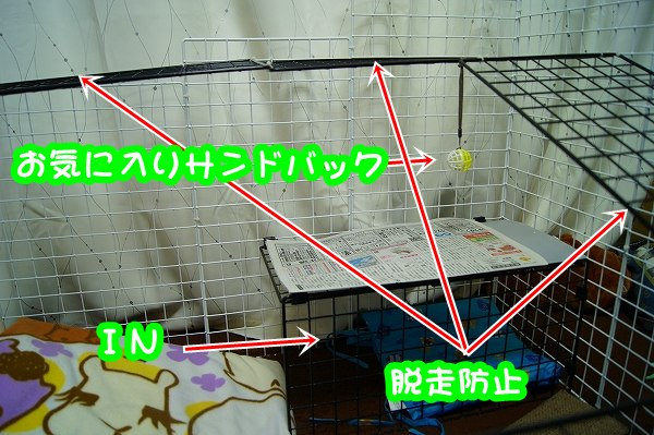 a0201967_21401154.jpg