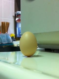 """由々しき曲解""""コロンブスの卵""""_f0008085_23194735.jpg"""