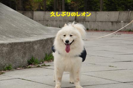 f0212597_20125398.jpg