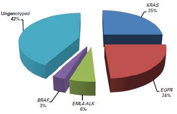 肺腺癌においてBRAF変異は3%、喫煙例に多く、G469A、D594Gは比較的特異性が高い_e0156318_18243049.jpg