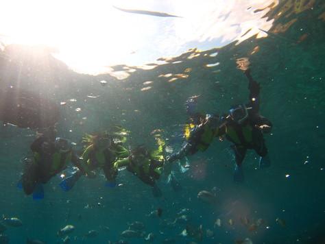 5月23日透明度30mオーバーの海♪_c0070933_20594710.jpg