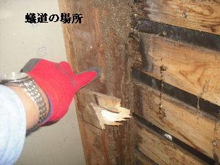 f0031037_20113169.jpg