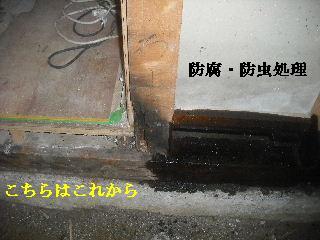 f0031037_2012439.jpg