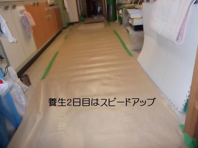 浴室モルタル仕上げ_c0186441_2058529.jpg