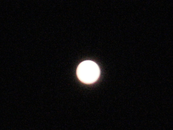 「ウエサク祭」の日のお月さま_a0174458_7362219.jpg