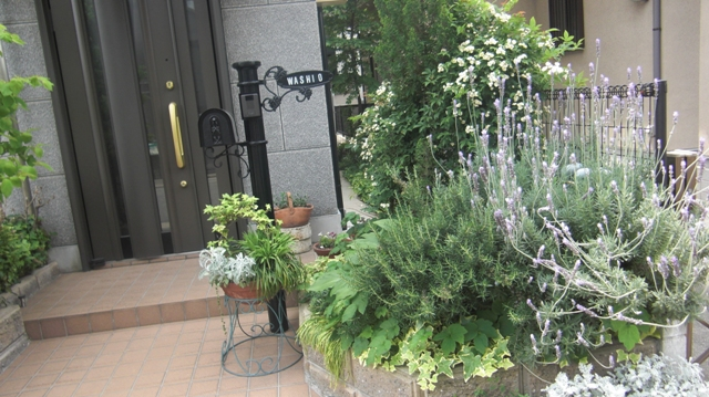 私達は花達と一緒に復興に向かいました。(83)_d0181492_9294270.jpg