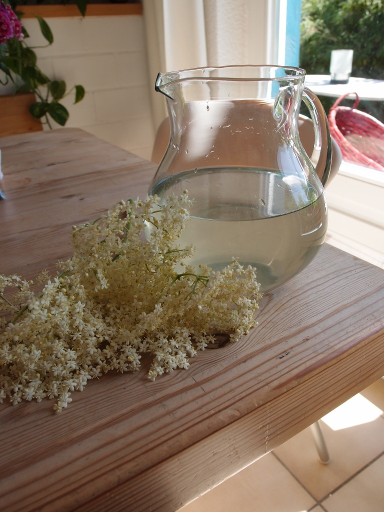 白い花の飲みもの_a0116902_13545743.jpg