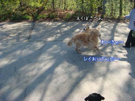 えっちゃん一筋_f0064906_1712618.jpg