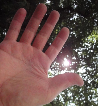 「手のひらに太陽の家」を思って_c0195909_8421445.jpg
