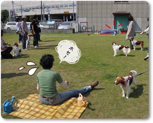 初夏のコイケルオフ☆ゲーム編_c0065512_0271262.jpg