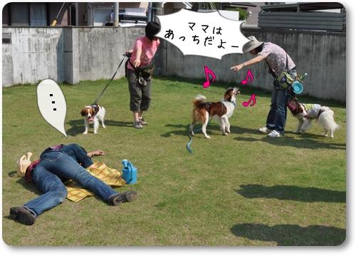 初夏のコイケルオフ☆ゲーム編_c0065512_0272768.jpg