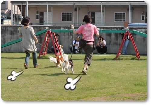 初夏のコイケルオフ☆ゲーム編_c0065512_0522454.jpg