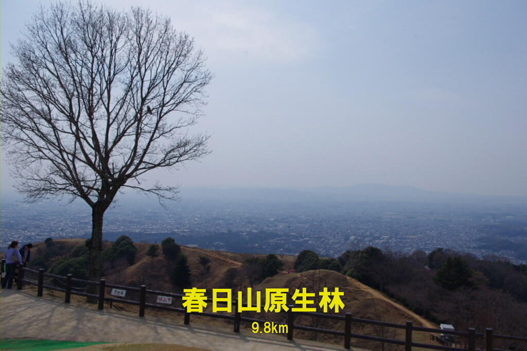 c0113733_0383750.jpg