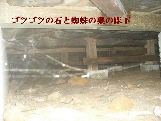 白蟻消毒・・開口部追加_f0031037_1913619.jpg