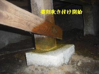 白蟻消毒・・開口部追加_f0031037_191569.jpg
