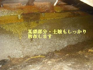 白蟻消毒・・開口部追加_f0031037_19237.jpg