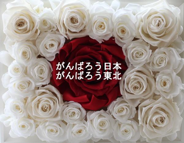 e0170658_1257533.jpg