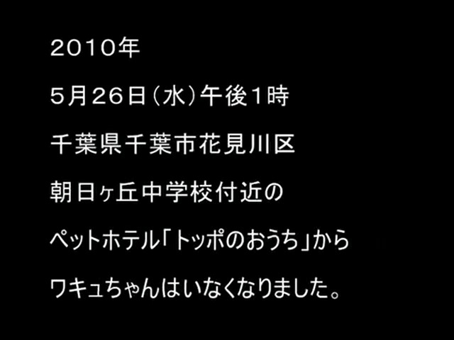 「ワキュのぶろぐ動画」第2弾「散歩編」できました! _a0021565_20304091.jpg