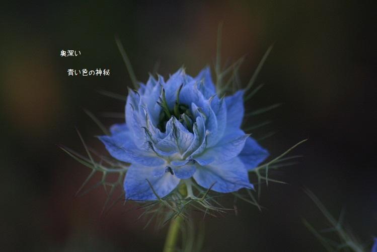 b0211674_21255892.jpg