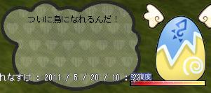 b0182599_1175974.jpg