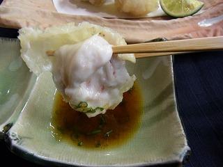 フグ白子の天ぷら!_f0157910_15592121.jpg