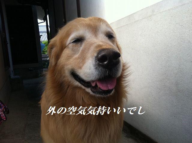 b0127531_15363944.jpg