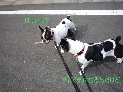 b0207912_1622690.jpg