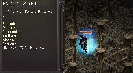b0036436_1151621.jpg