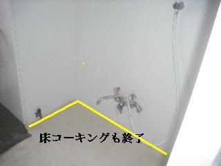 時間軸と思考連続体_f0031037_222396.jpg
