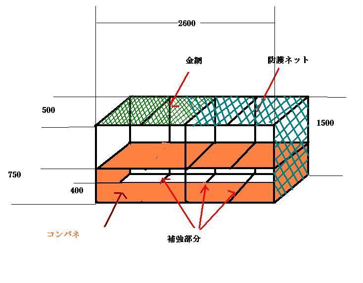 時間軸と思考連続体_f0031037_2263478.jpg