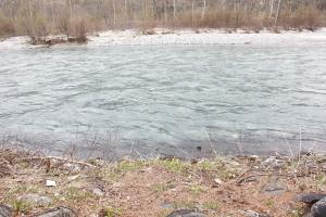 川をキレイにしたいって、思いました・・・_b0007182_19483967.jpg