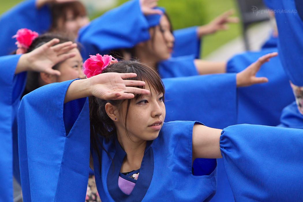 響け鳴子!想いよ空を駆け巡れ!踊魂~春の陣~:その4_c0187584_21362182.jpg