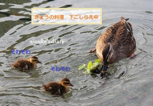 f0061585_20201193.jpg