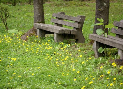 七滝の側のカエデのツボミ?と、 津軽街道の景色など_a0136293_19284478.jpg