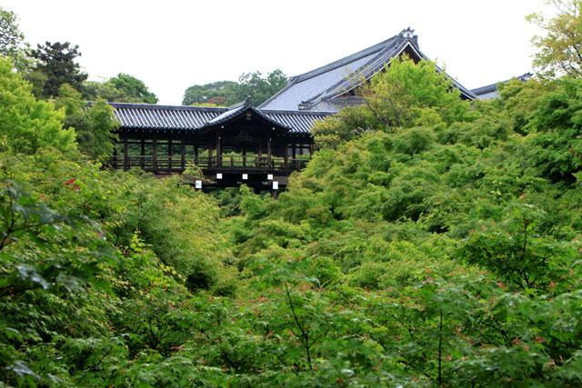 東福寺 深緑_e0048413_20503279.jpg