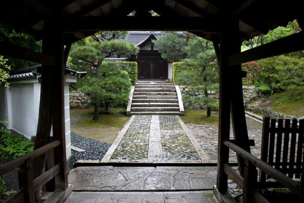 東福寺 深緑_e0048413_20504473.jpg