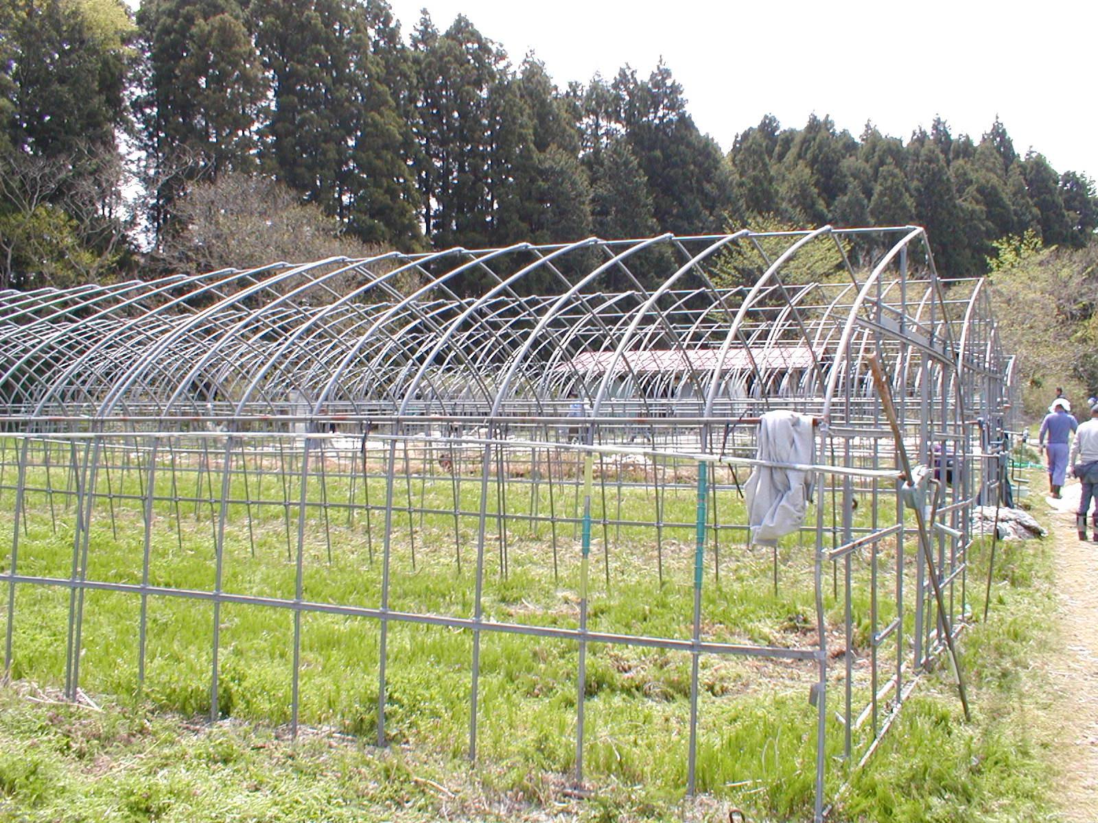 避難者支援第2農場 KFCハウス完成_e0102418_16504669.jpg