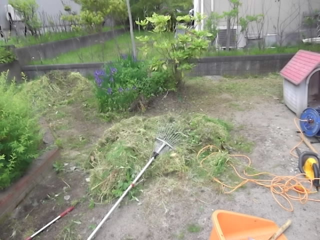 庭の草刈とカーポート洗浄_c0186441_20493781.jpg
