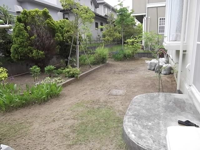 庭の草刈とカーポート洗浄_c0186441_20502619.jpg