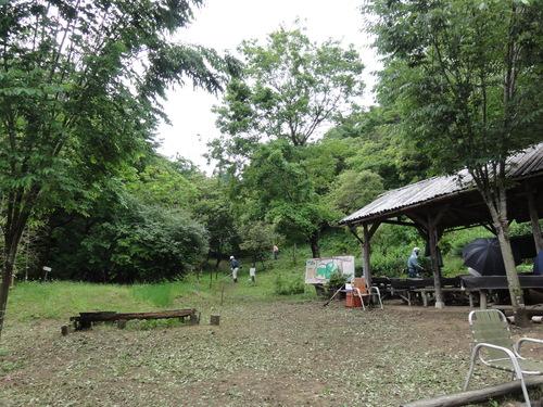 定例活動日:雨中の草刈り_c0108460_18471674.jpg