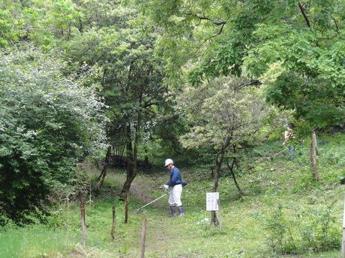 定例活動日:雨中の草刈り_c0108460_18481316.jpg