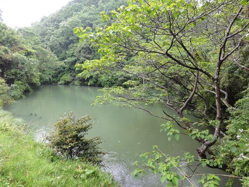 定例活動日:雨中の草刈り_c0108460_18514760.jpg