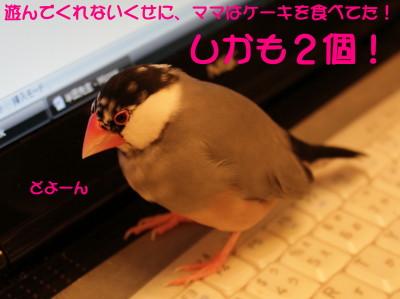 b0158061_211042.jpg