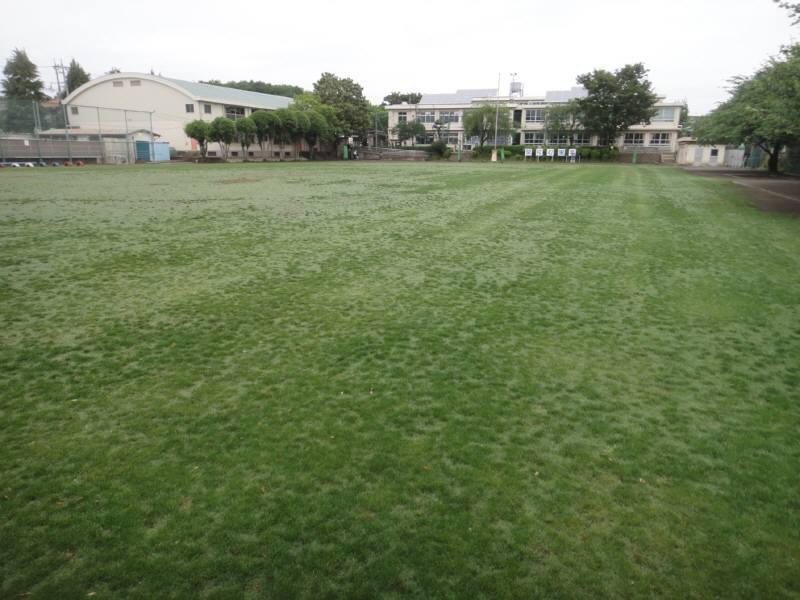芝刈りボランティア募集_f0059673_6164981.jpg