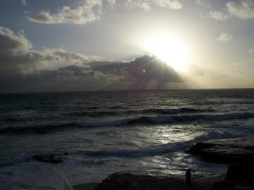 初めてのビーチで○○○@サンディエゴ_e0183383_1551121.jpg