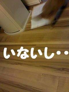 b0210702_21351110.jpg