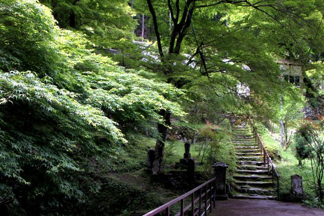 杉坂 地蔵院_e0048413_2114898.jpg